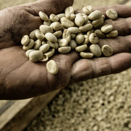 Hand with green coffee beans for Nespresso recycling campaign