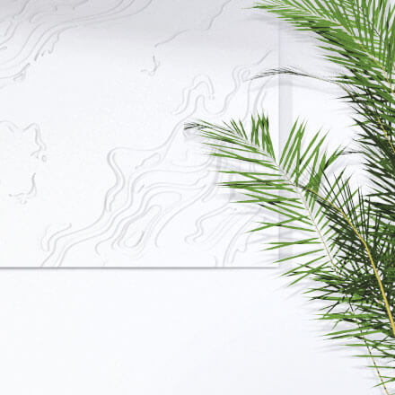Palm leaves and the white topography wall art